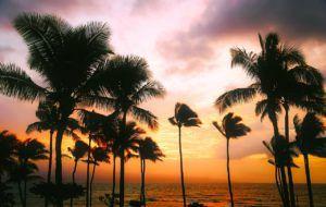 hawaii 1945486 1280 300x190 - hawaii-1945486_1280