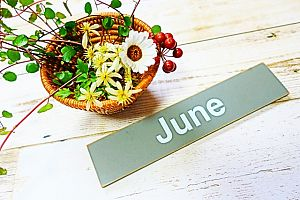 660a0271304d0f65e5d551ed12e98a0d s - ジューンブライドの結婚式で入籍。おすすめの6月の結婚式の結婚式場・日取りは?
