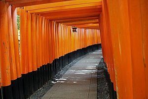 japanese 3510081 640 - ゴールデンウィーク2020年、おすすめ関西旅行。 イベント・穴場・ツアーもチェックしよう。