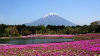 fuji 2828685 640 320x180 - 関東の芝桜を見に行こう!名所・時期・まつり